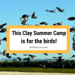 birdsummercamp