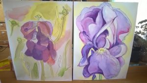 Water Color Flowers with Susan Jenkins