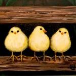 B28  Chicks on a Fence