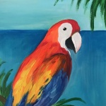 D2  Paul the Parrot