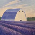 A3  Lavender Farm